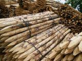 Afrasteringspalen kastanje hout | Kuiper Koekange